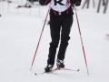 36.SWIX NORDIC Skitest 2010
