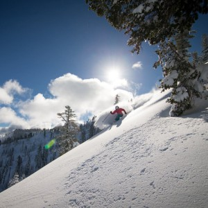 instagram squawalpine