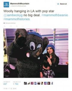 tweet mammoth